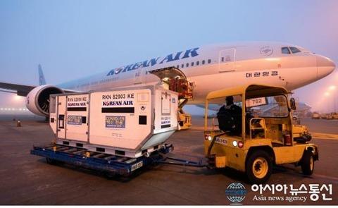 【韓国】 日本の空港で灯火破損した大韓航空、課徴金3億ウォン取り消し訴訟で敗訴