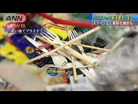 【環境大臣】小泉進次郎「これからは無料でスプーンが出てこなくなる。レジ袋有料化の発展版だ」