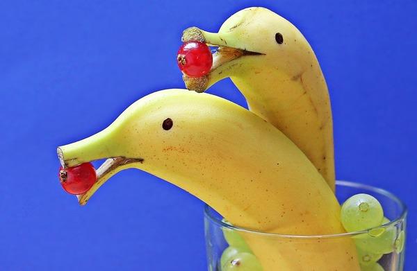 【画像】予想以上に『バナナ』な鳥さん、現れるwwwwwww