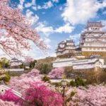 【大朝鮮】桜は「元々は中国のものだ!」、なぜ日本を代表する花になったのか=中国