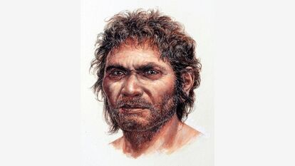 【人類学】日本人の祖先は「港川人」? 旧石器時代、DNAで解析